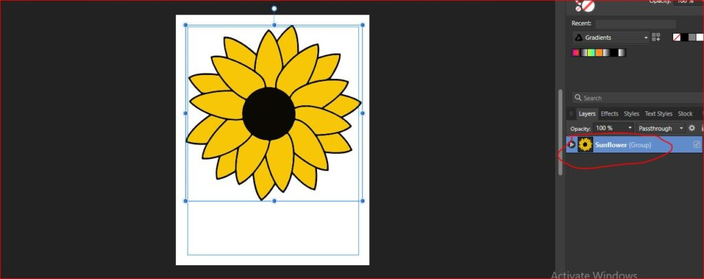 sunflower coloring page setting up